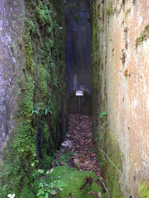 Jean Stern Parc du Haut-Jura